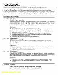 Executive Assistant Resume Template Word Professional Administrative