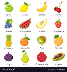 fruit food group clipart. Contemporary Group Fruit Food Icons Set Isometric Style Vector Image With Food Group Clipart O