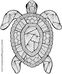Animal Coloring Book Pdf Zoo Animal Coloring Pages Adult Colouring