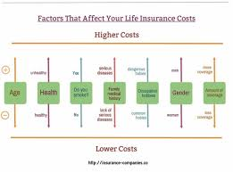 Life Insurance Types Comparison Chart Different Types Of Life Insurance Explanation The