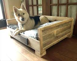 outdoor raised dog bed outdoor elevated dog bed designs diy raised outdoor dog bed
