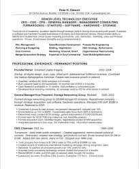 Employment History Template Mesmerizing Resume Work History Format Career History Sample Resume Employment