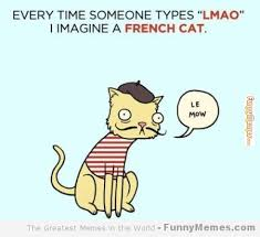 FunnyMemes.com • Cat memes - [I imagine a french cat] via Relatably.com