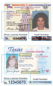 Tx License Audit Number Drivers