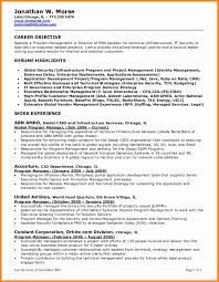 Delighted Cio Resume Summary Examples Photos Documentation