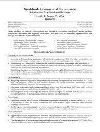 resume summary statement. summary resume examples .