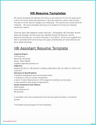 Office Clerk Resume Luxury Microsoft Templates Resume Wizard