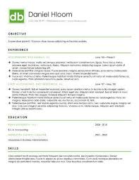 Contemporary Resume Format