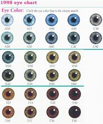 Eye Genetics Chart Eye Color Chart Denver Era My Twinn Eye Color Charts