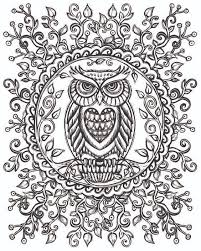 Small Picture 431 best coloring owl images on Pinterest Owls Coloring and