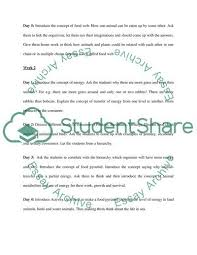 Food Chain Lesson Plan Essay Example 81240400715 Food Chain
