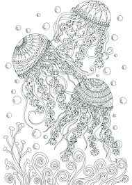 Small Picture Best 25 Ocean coloring pages ideas on Pinterest Ocean animals