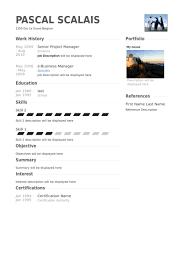Senior Project Manager Resume Samples Visualcv Resume Samples Database