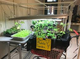 in the summer of 2017 the environmental center launched the inaugural school garden grant program with a goal to provide local funding for schools in