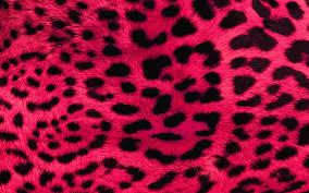 Leopard Wallpaper For Bedrooms Pink Leopard Wallpaper For Bedroom A Wallppapers Gallery