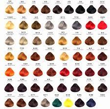 Hicolor Loreal Color Chart 76 Prototypic Pravana Vivids Swatches