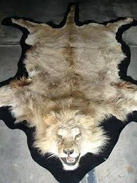 lion head rug vintage lion full skin rug with mounted head faux lion head rug