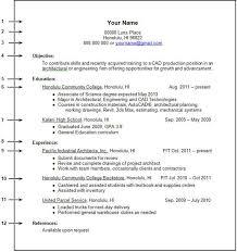resume work experience sample sample