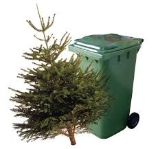 Image result for refuse collections christmas