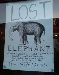 lost and found flyers funny lost and found signs 30 pics funny signs