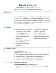 Marketing Experience Resume Marketing Combination Resume Resume Help