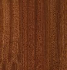 hardwood hardwood carpet