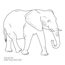 Small Picture Walking African Elephant Coloring Page