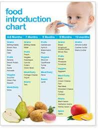 Baby Bullet Baby Food Guide Making Baby Food Baby First