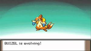 Pokemon Weasel Evolution Chart Pokemon Platinum Buizel Evolves To Floatzel Hd
