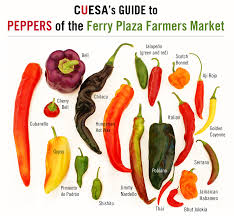 Hot Pepper Picture Chart Sweet To Heat A Guide To