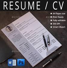 Professional Resume Layout Professional Resume Templates