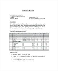 Professional Resume For Chartered Accountants Sample Resume For