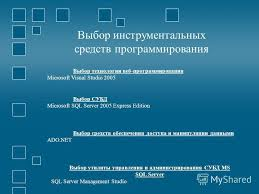 Презентация на тему Отчет по преддипломной практике Выполнил  10 Выбор инструментальных