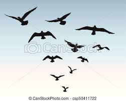 blue bird flying silhouette.  Silhouette Bird Flock Flying Over Blue Sky Background Animal Wildlife  Csp50411722 With Blue Flying Silhouette V