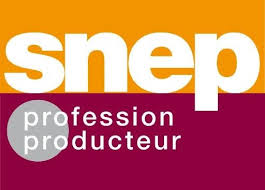 Snep Chart Music Streams Now Count Towards Music Awards In France