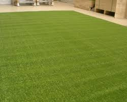 carpet grass. carpet - grass astro turf- charged per square m (turf)