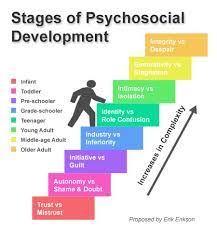 Erik Eriksons Stages Of Development Chart Theorists