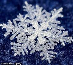 real snowflake. Unique Snowflake Timofey Cherepanov Spends Hours Taking These Incredible Macro Photographs  Of Real Snowflakes For Real Snowflake R