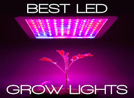 Best Led Grow Lights Buying Guide Updated Comparison List