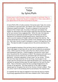 a grade higher english level critical essay on sylvia plath s poem a grade higher english level critical essay on sylvia plath s poem tulips by biggles1230 teaching resources tes