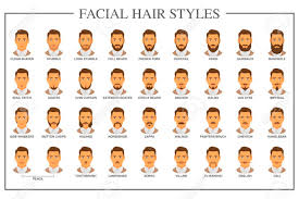 ひげのスタイル ガイド顔の毛の種類はベクトル イラストです口ひげとあごひげ男モデル顔コレクションに