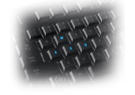 razer lycosa mirror buy gaming grade keyboard official razer the razer lycosa mirror special edition provides for selective anti ghosting around the wasd gaming cluster to allow more commands to be entered at any one