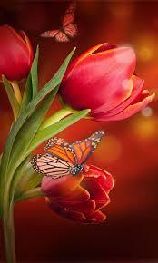 flowers wallpaper hd screenshot 3 3
