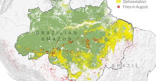 Amazon World Music Charts What Satellite Imagery Tells Us About The Amazon Rain Forest