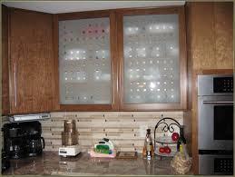 Modern Glass Cabinet Doors Aluminum Frame Home Depot Door Levers