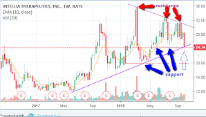 Long Term Outlook For Intellia Therapeutics October 9 2018