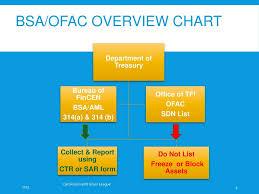 Ofac Organizational Chart Bsa Aml Ofac Staff Training Ppt Download