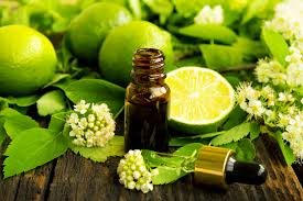 Image result for aromatherapy