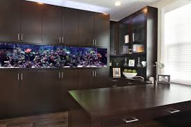 office fish. Home Office - Contemporary Built-in Desk Dark Wood Floor Idea In Orange Fish