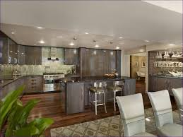 placing recessed lighting in living room. large size of kitchen room:fabulous types recessed lighting halogen lights best placing in living room